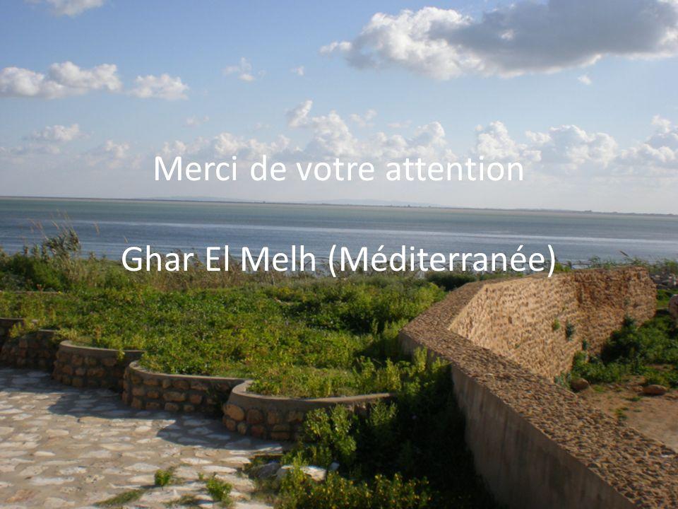 Merci de votre attention Ghar El Melh (Méditerranée)