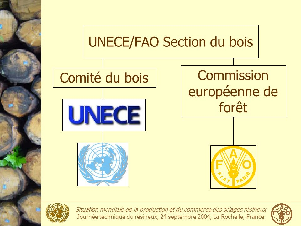 UNECE/FAO Section du bois