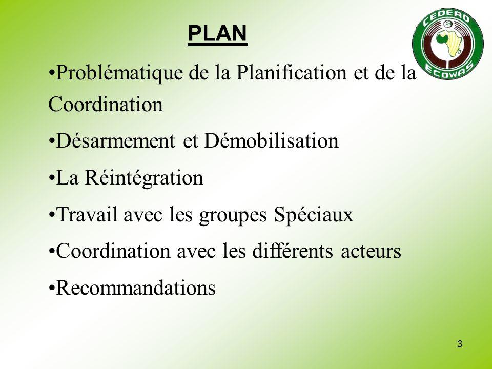 PLAN Problématique de la Planification et de la Coordination. Désarmement et Démobilisation. La Réintégration.