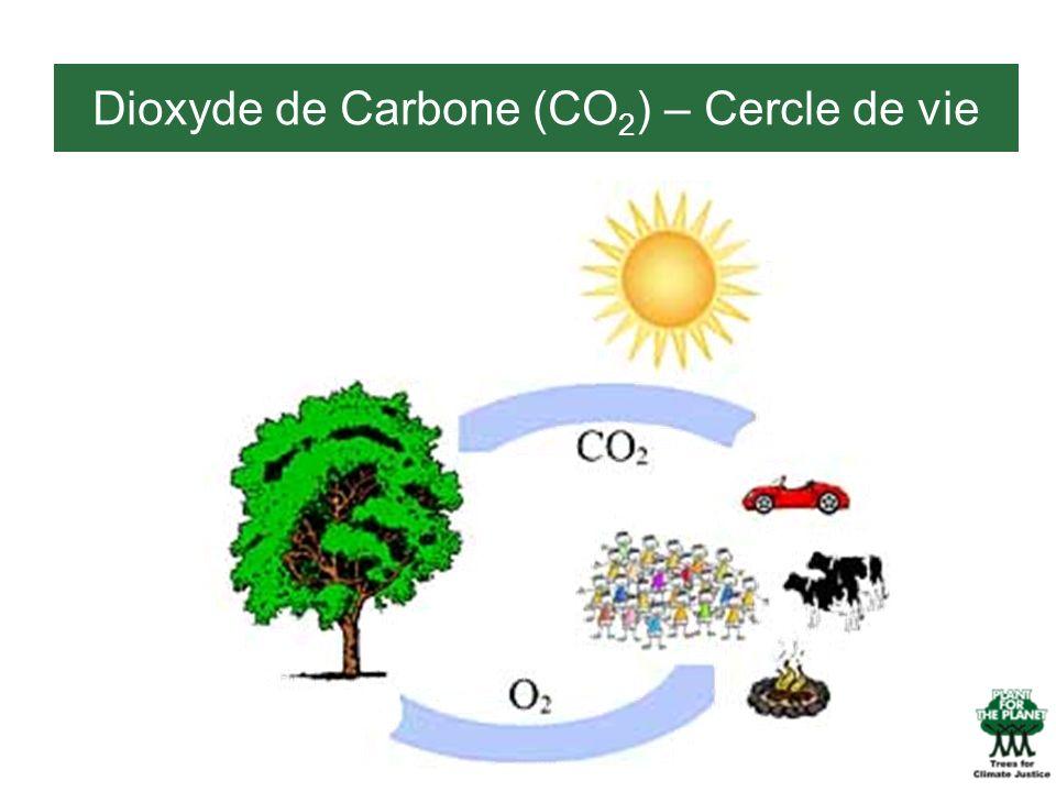 Dioxyde de Carbone (CO2) – Cercle de vie