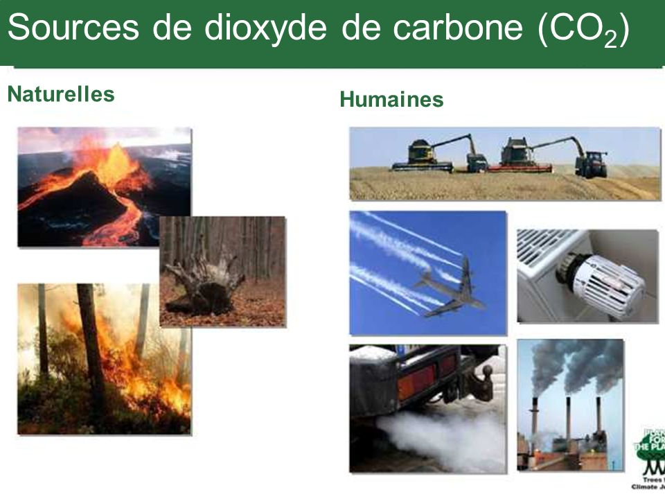 Sources de dioxyde de carbone (CO2)