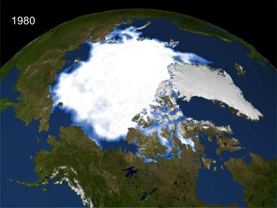 1980 Ici vous voyez à quoi ressemblait la mer arctique en 1980, au pôle nord avec la glace du Groenland.