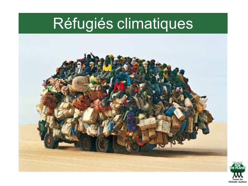 Réfugiés climatiques Réfugiés climatiques!