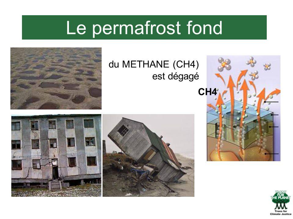 Le permafrost fond du METHANE (CH4) est dégagé CH4