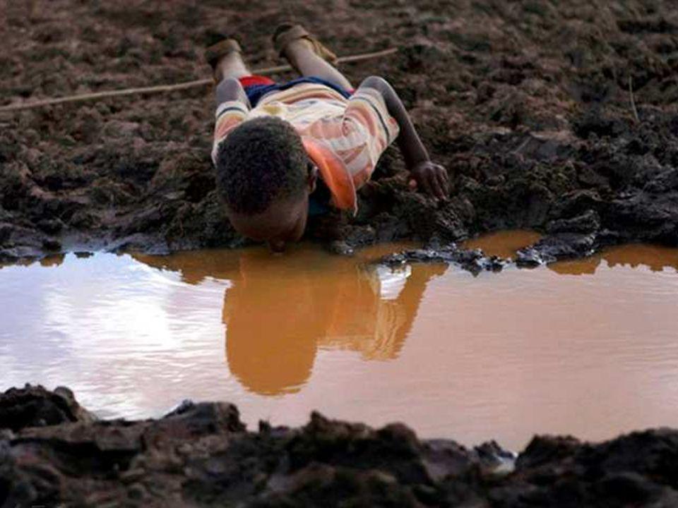 01/29/10 Dans beaucoup de pays du monde, l'eau potable est rare et polluée. Ce garçon ne regarde pas son reflet dans la flaque, non, il boit !