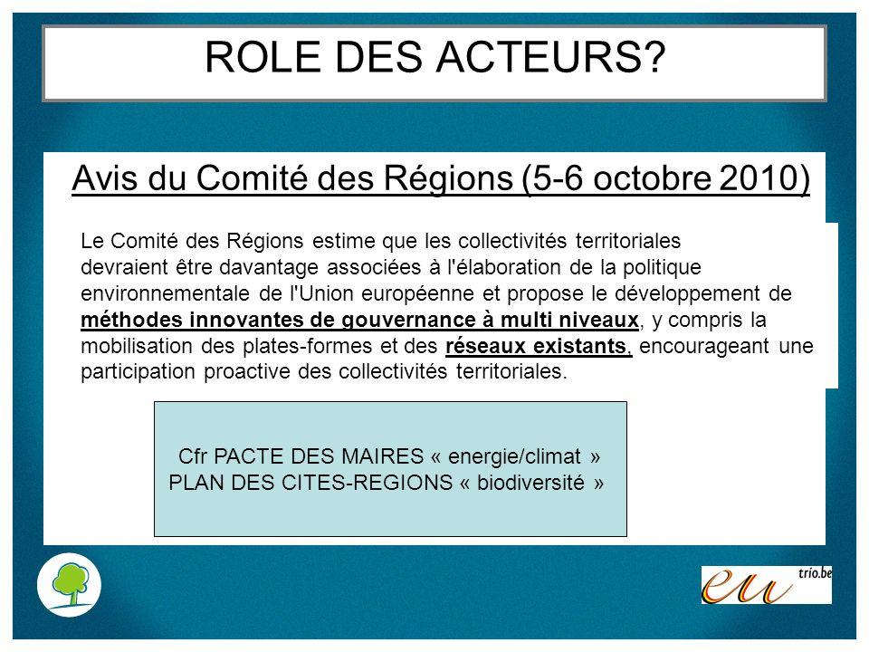 ROLE DES ACTEURS Avis du Comité des Régions (5-6 octobre 2010)