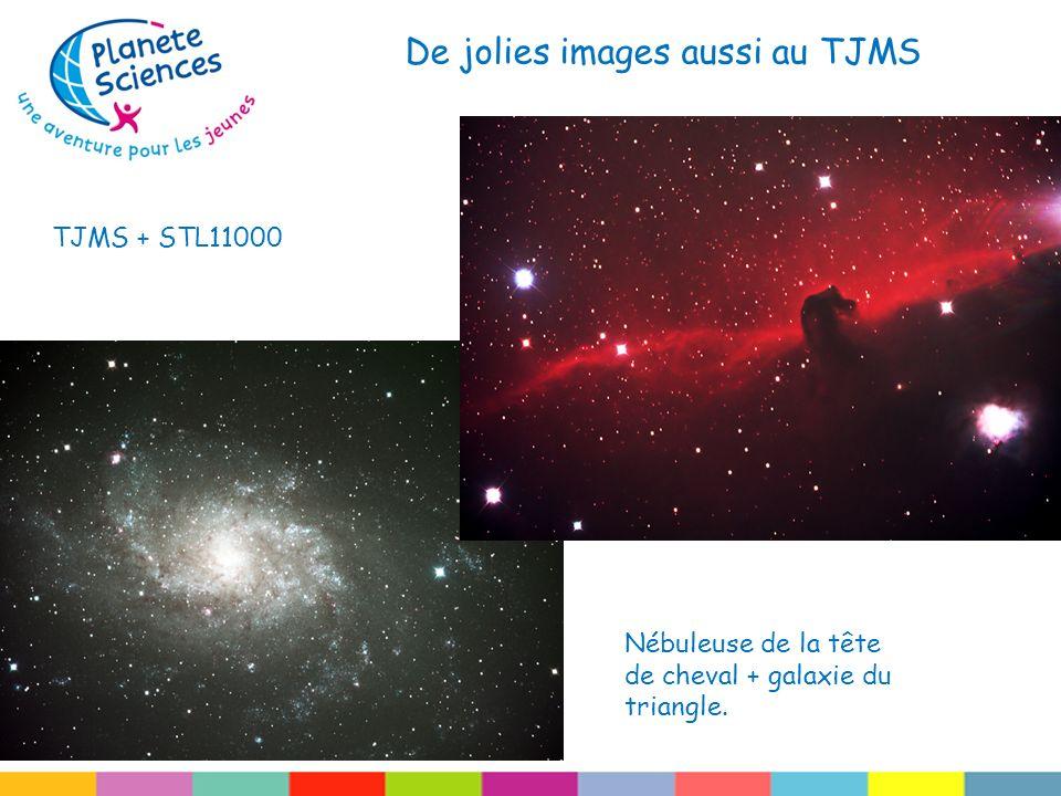 De jolies images aussi au TJMS