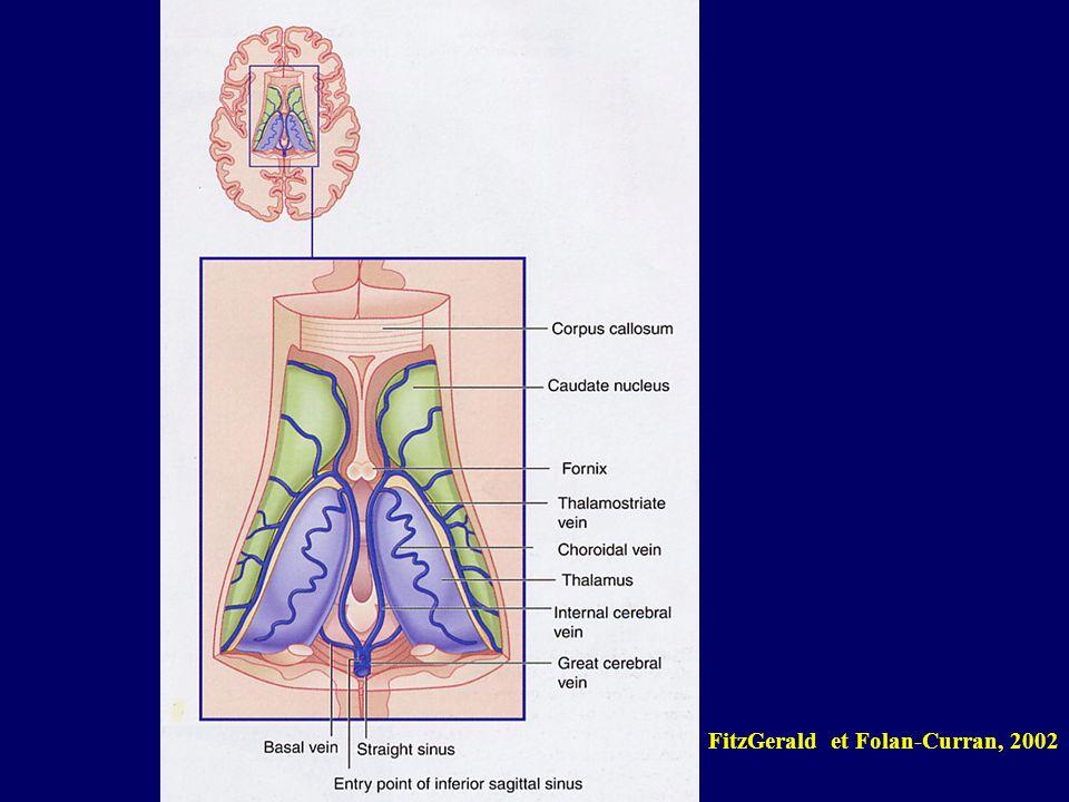 FitzGerald et Folan-Curran, 2002