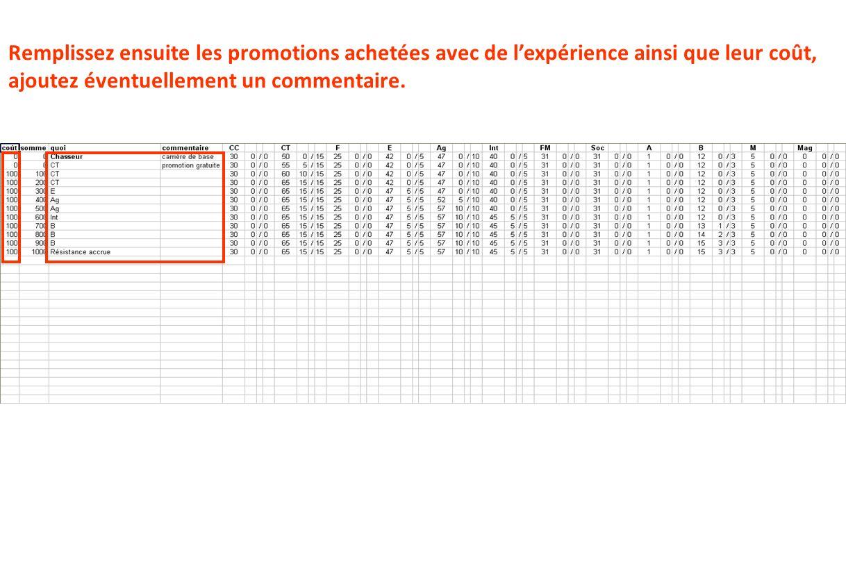 Remplissez ensuite les promotions achetées avec de l'expérience ainsi que leur coût, ajoutez éventuellement un commentaire.