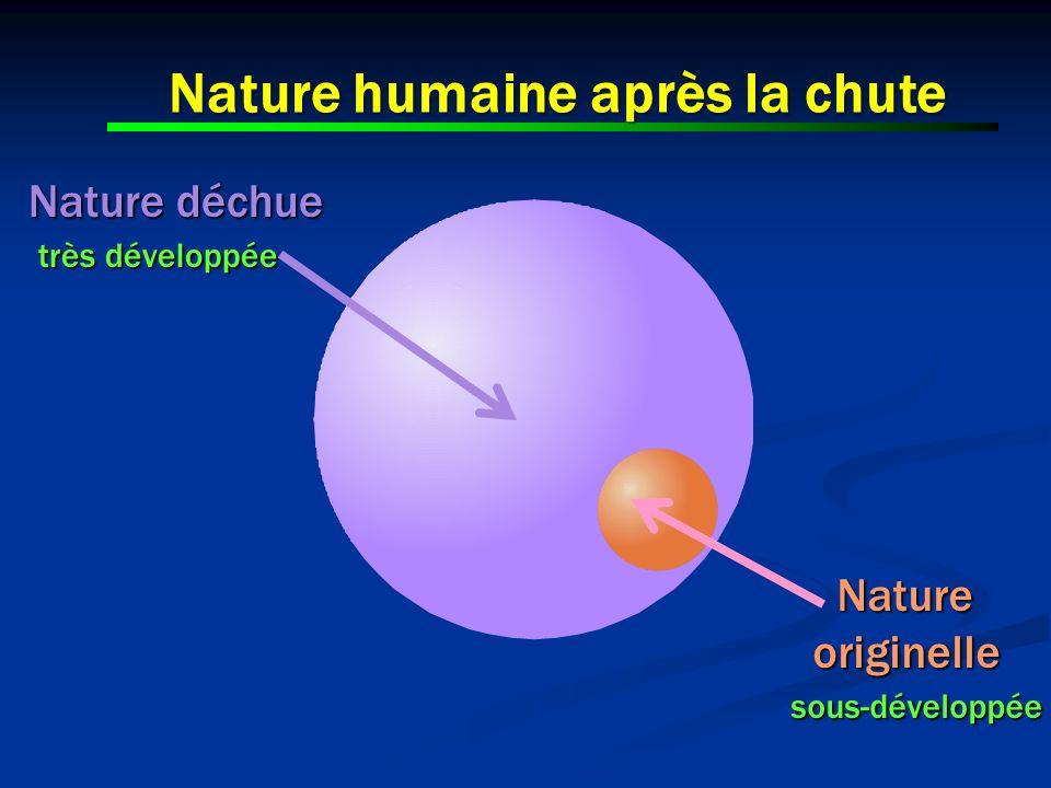 Nature humaine après la chute