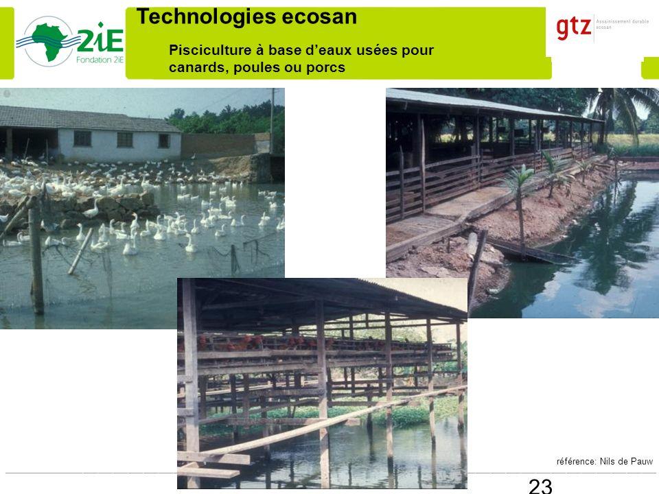 Pisciculture à base d'eaux usées pour canards, poules ou porcs