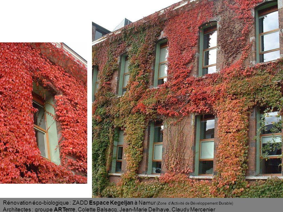 Rénovation éco-biologique : ZADD Espace Kegeljan à Namur (Zone d'Activité de Développement Durable)