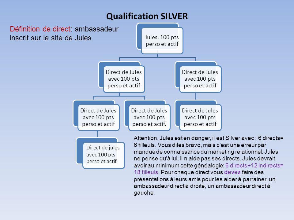 Qualification SILVER Définition de direct: ambassadeur inscrit sur le site de Jules.