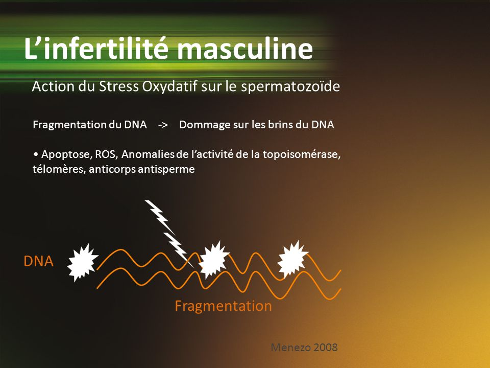 L'infertilité masculine