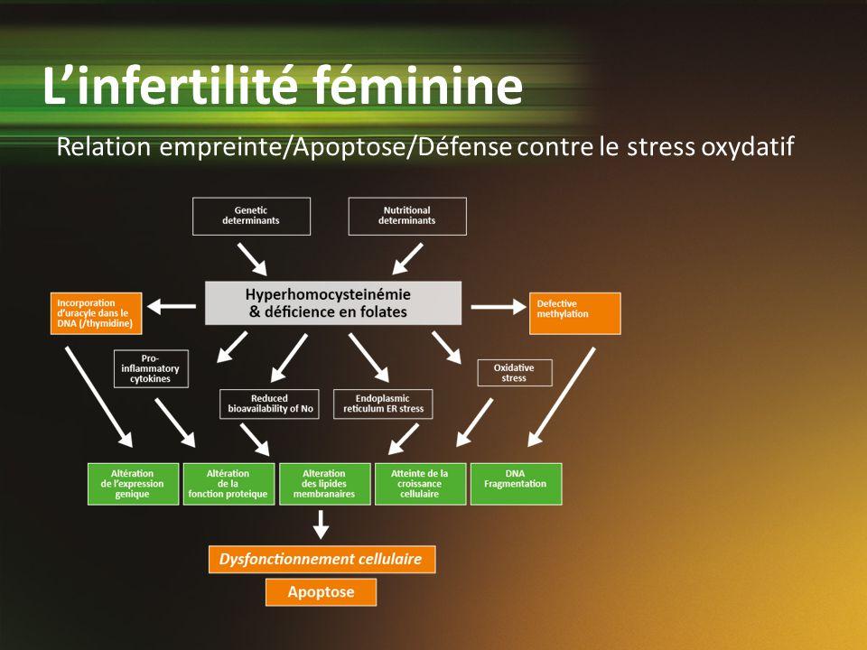 L'infertilité féminine
