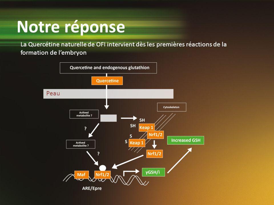 Notre réponse La Quercétine naturelle de OFI intervient dès les premières réactions de la formation de l'embryon.