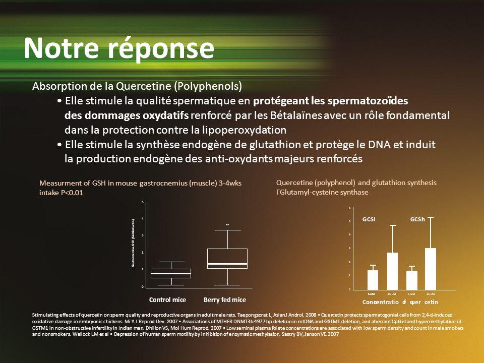 Notre réponse Absorption de la Quercetine (Polyphenols)