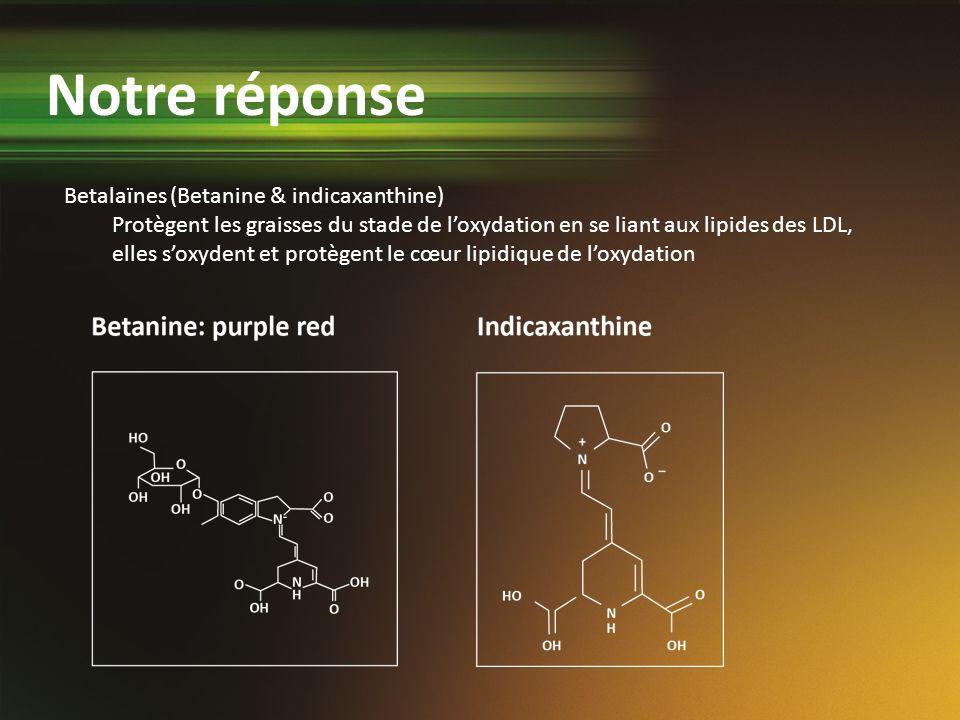 Notre réponse Betalaïnes (Betanine & indicaxanthine)