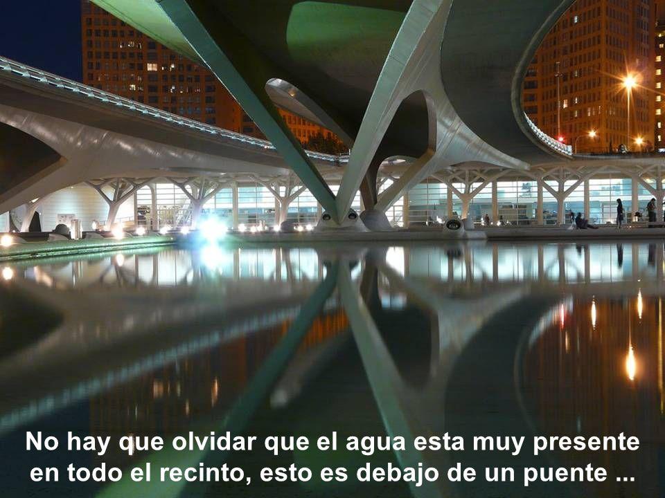 No hay que olvidar que el agua esta muy presente en todo el recinto, esto es debajo de un puente ...