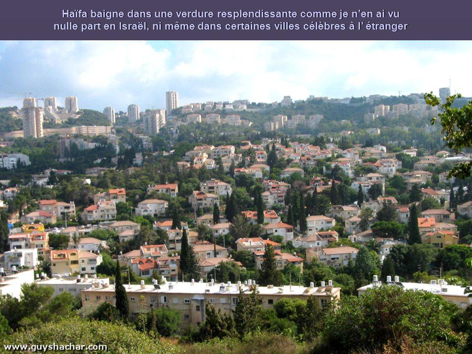 Haïfa baigne dans une verdure resplendissante comme je n'en ai vu nulle part en Israël, ni même dans certaines villes célèbres à l' étranger