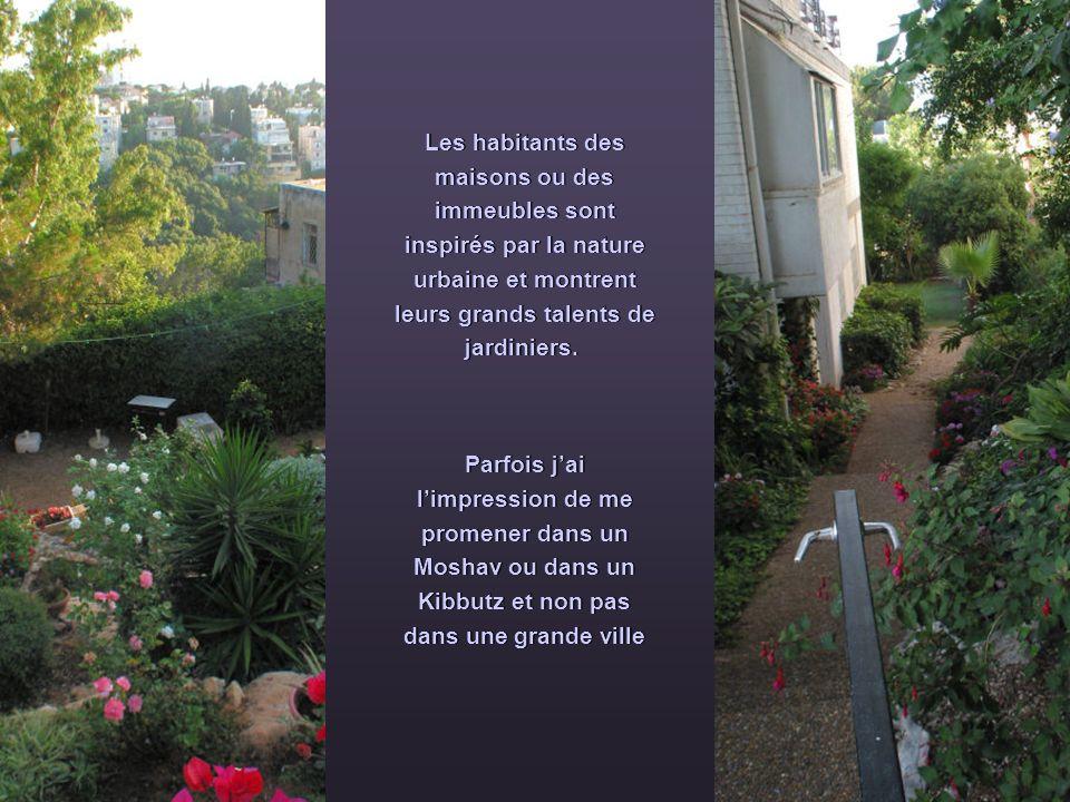 Les habitants des maisons ou des immeubles sont inspirés par la nature urbaine et montrent leurs grands talents de jardiniers.