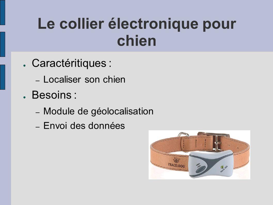 Le collier électronique pour chien