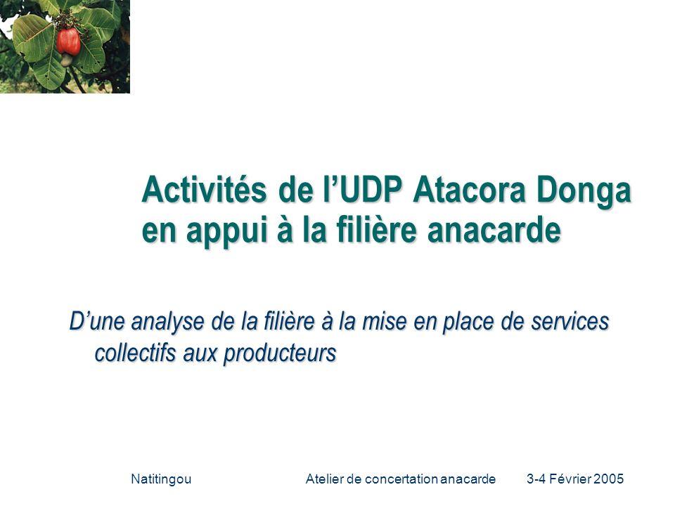 Activités de l'UDP Atacora Donga en appui à la filière anacarde