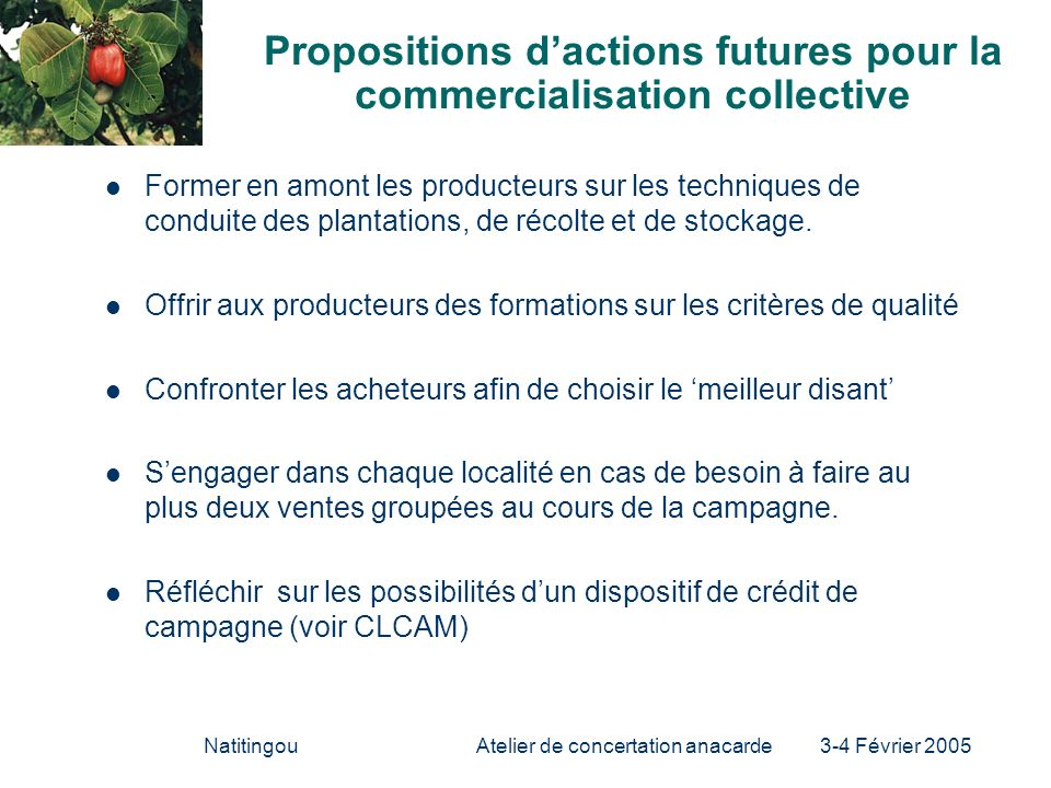 Propositions d'actions futures pour la commercialisation collective