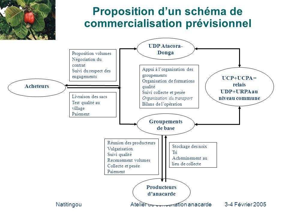 Proposition d'un schéma de commercialisation prévisionnel