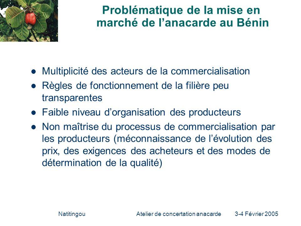 Problématique de la mise en marché de l'anacarde au Bénin