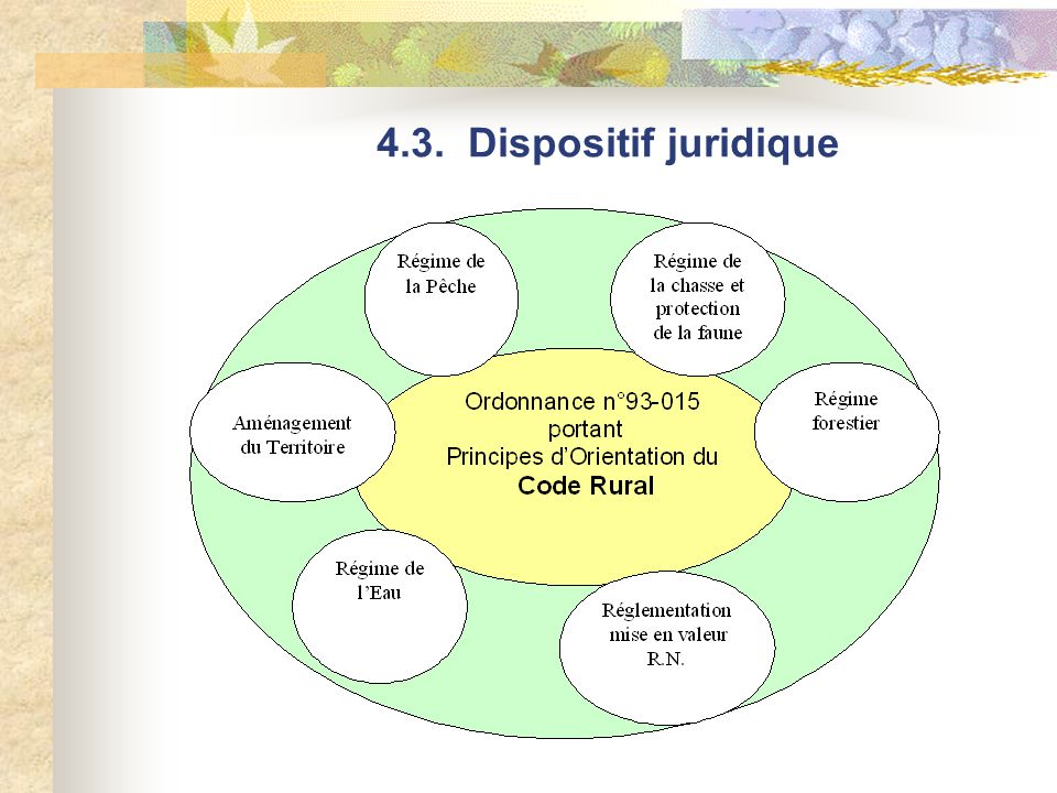 4.3. Dispositif juridique