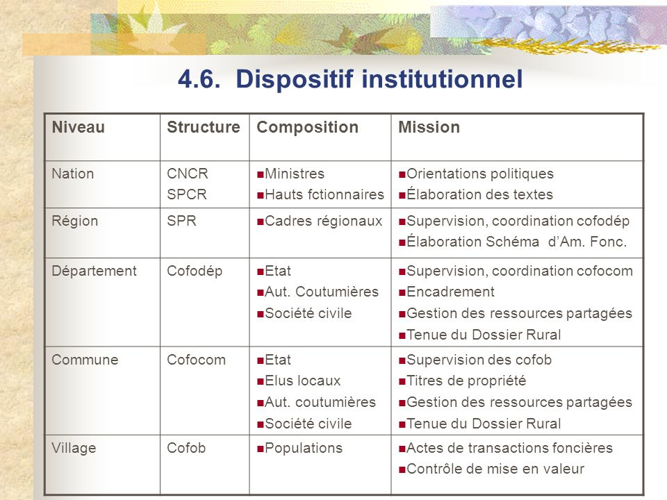 4.6. Dispositif institutionnel