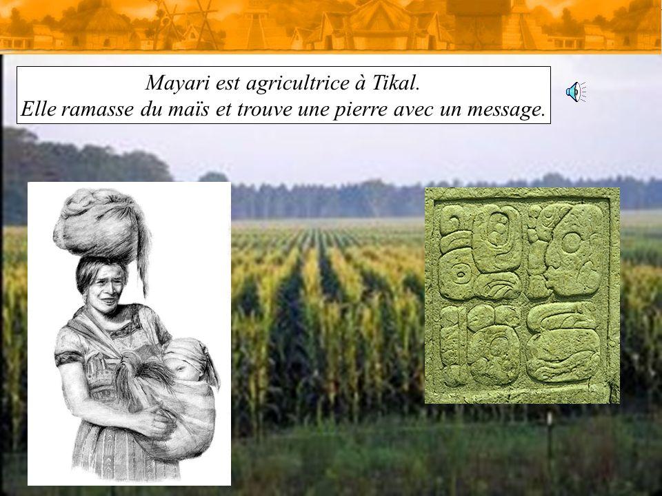 Mayari est agricultrice à Tikal