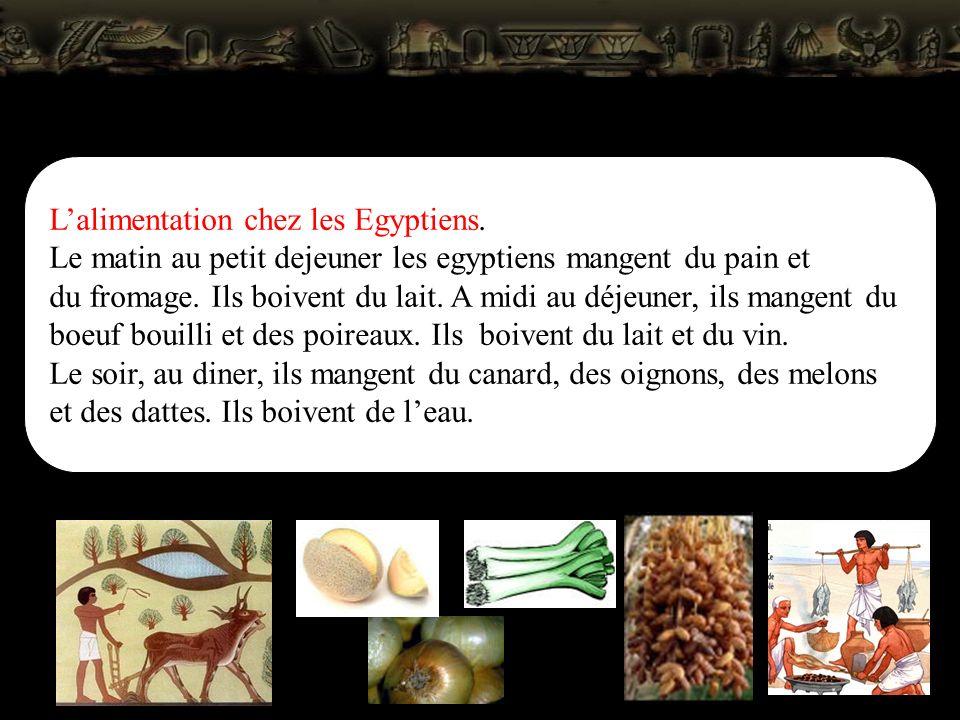 L'alimentation chez les Egyptiens