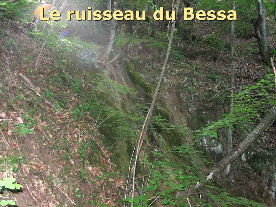 Le ruisseau du Bessa
