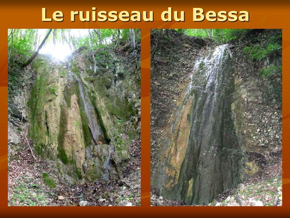 Le ruisseau du BessaEnviron 8 à 10 m de hauteur… mais rien qui ne ressemblait aux cartes postales du siècle dernier !