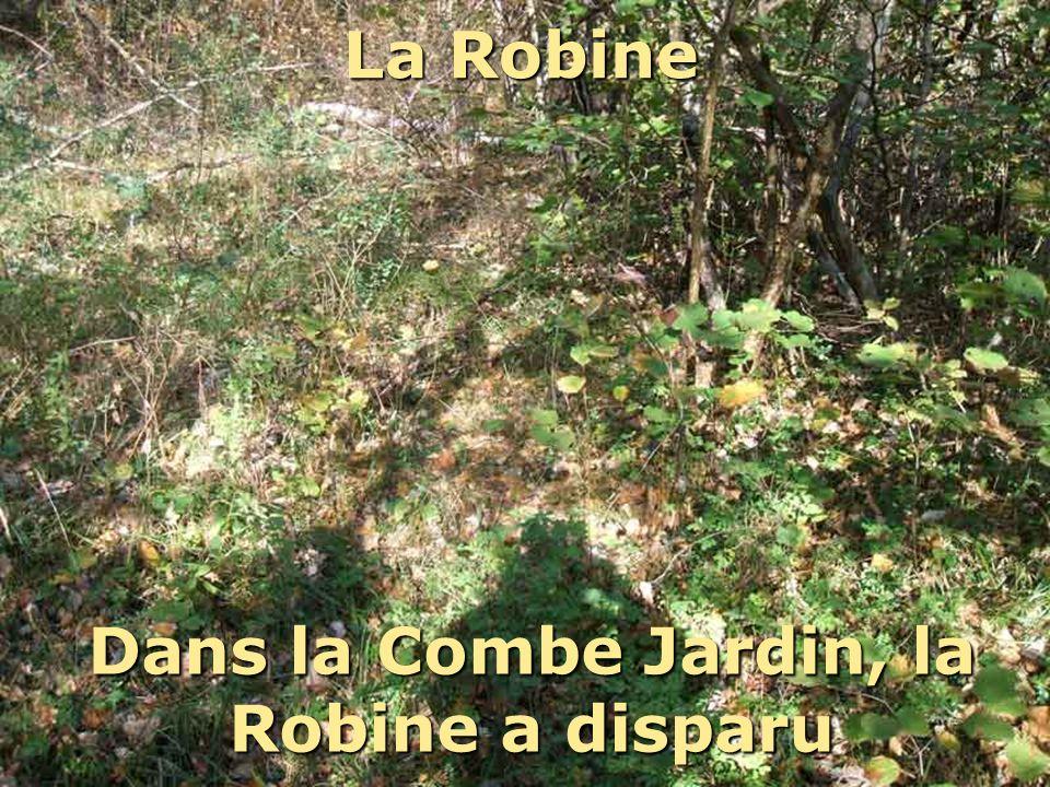 Dans la Combe Jardin, la Robine a disparu