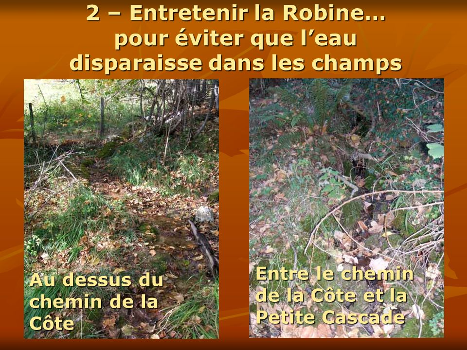 2 – Entretenir la Robine… pour éviter que l'eau disparaisse dans les champs