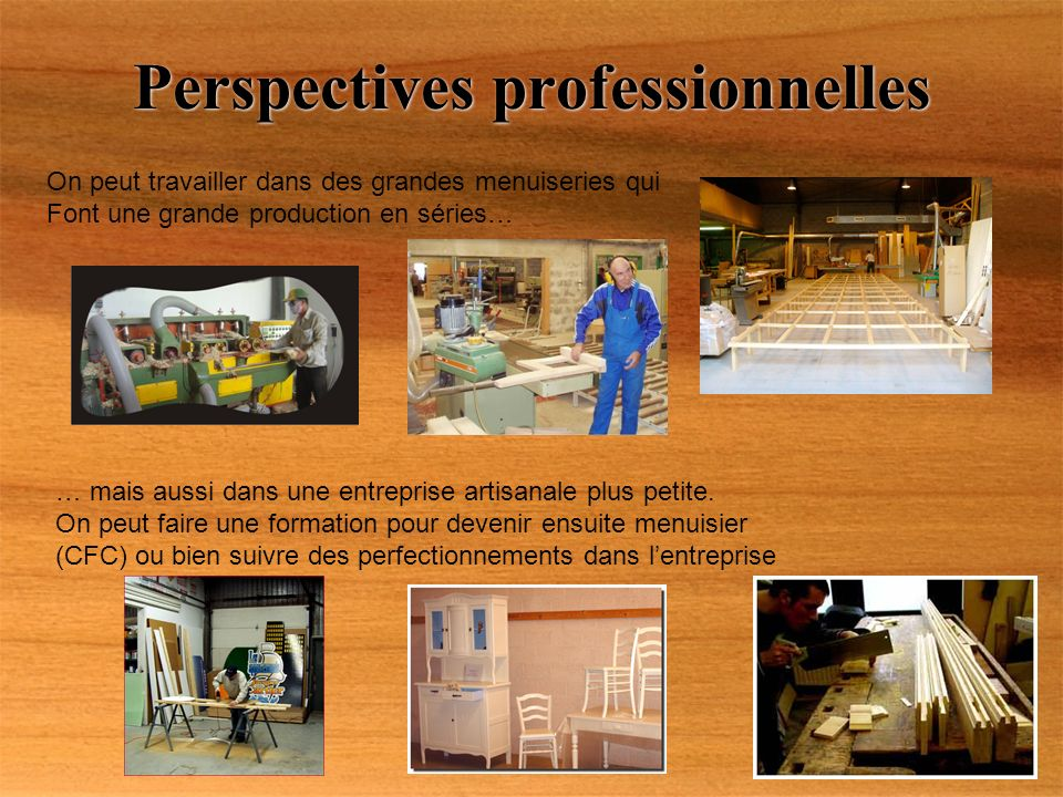 Perspectives professionnelles