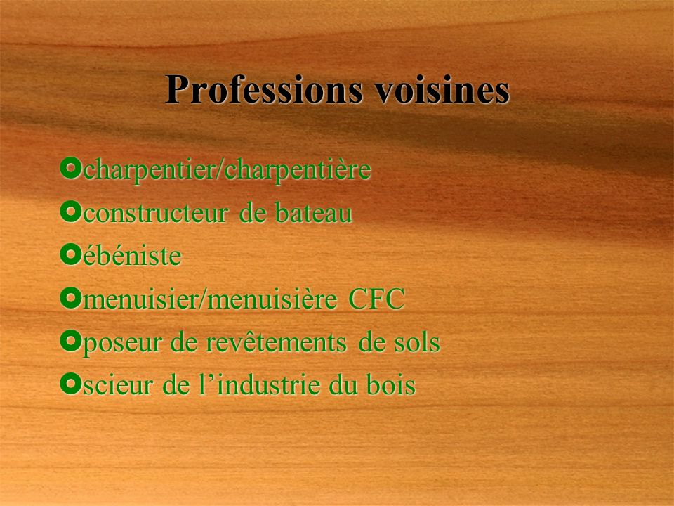 Professions voisines charpentier/charpentière constructeur de bateau