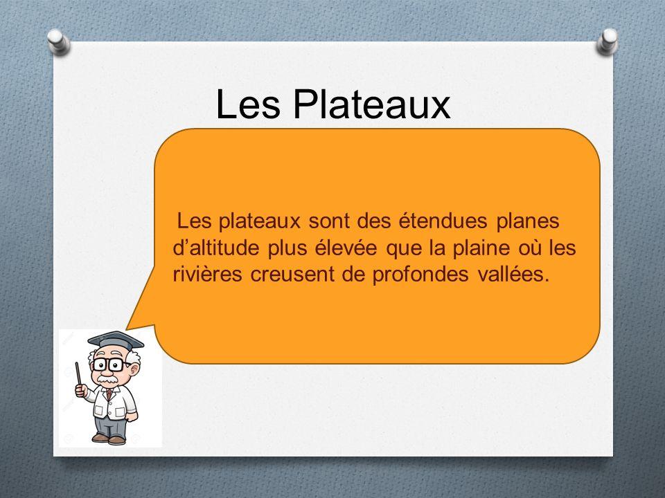 Les Plateaux Les plateaux sont des étendues planes d'altitude plus élevée que la plaine où les rivières creusent de profondes vallées.