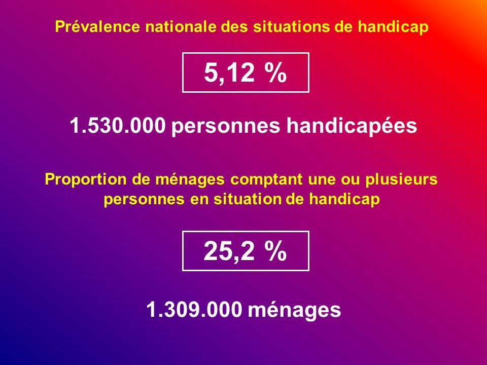 5,12 % 25,2 % 1.530.000 personnes handicapées 1.309.000 ménages