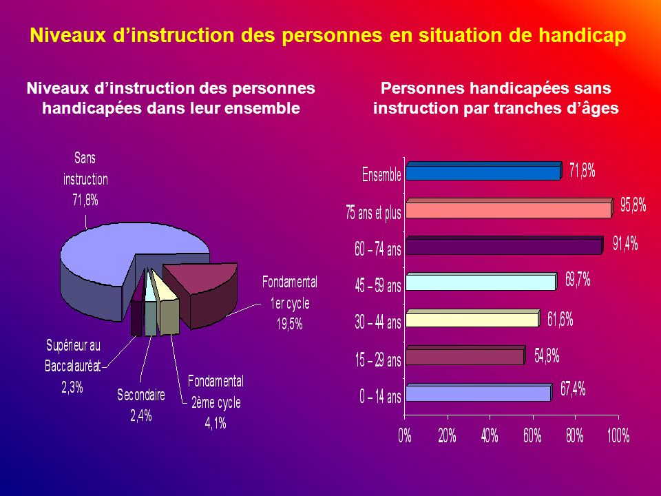 Niveaux d'instruction des personnes en situation de handicap
