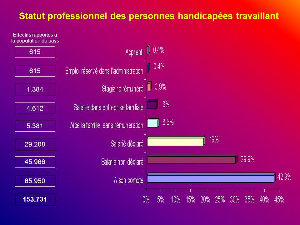 Statut professionnel des personnes handicapées travaillant