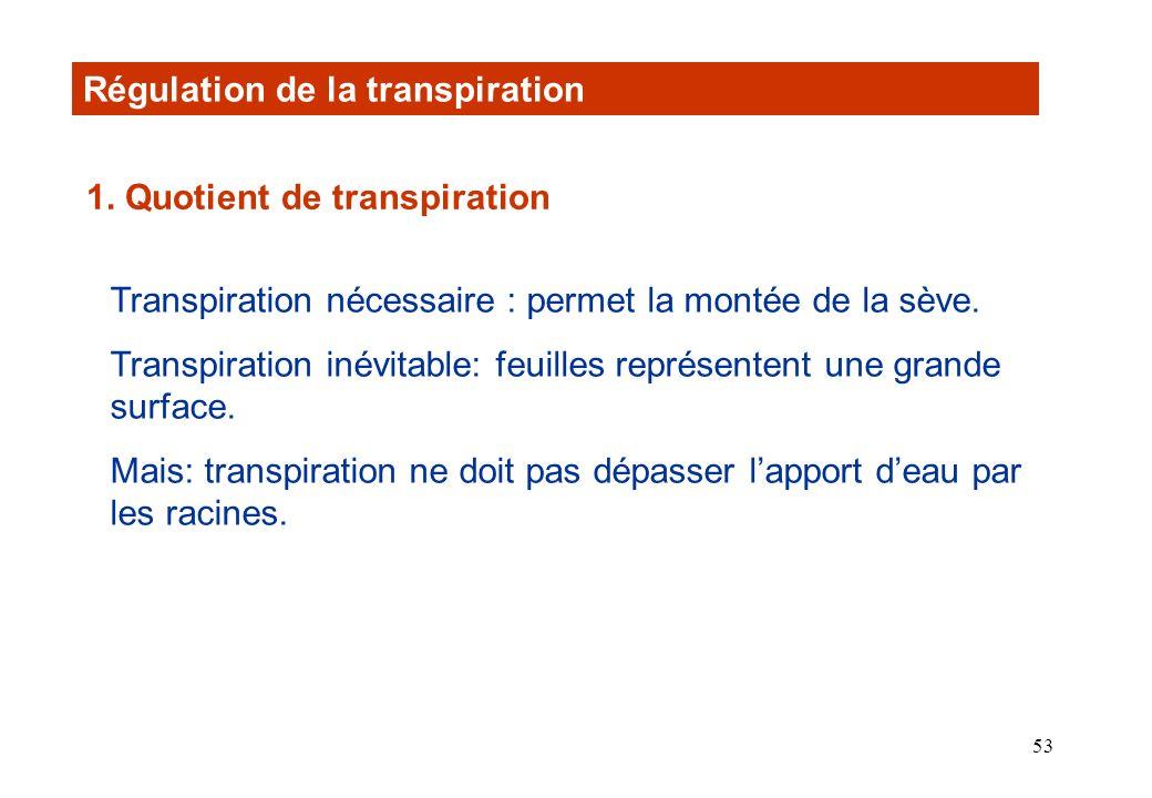 Régulation de la transpiration