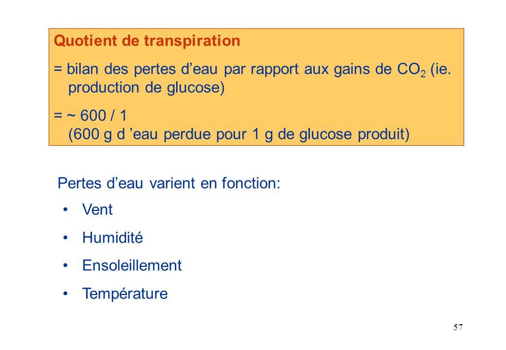 Quotient de transpiration