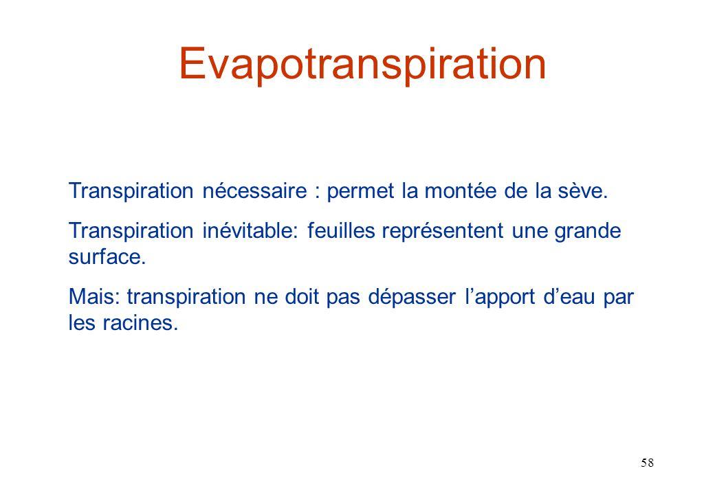 Evapotranspiration Transpiration nécessaire : permet la montée de la sève. Transpiration inévitable: feuilles représentent une grande surface.