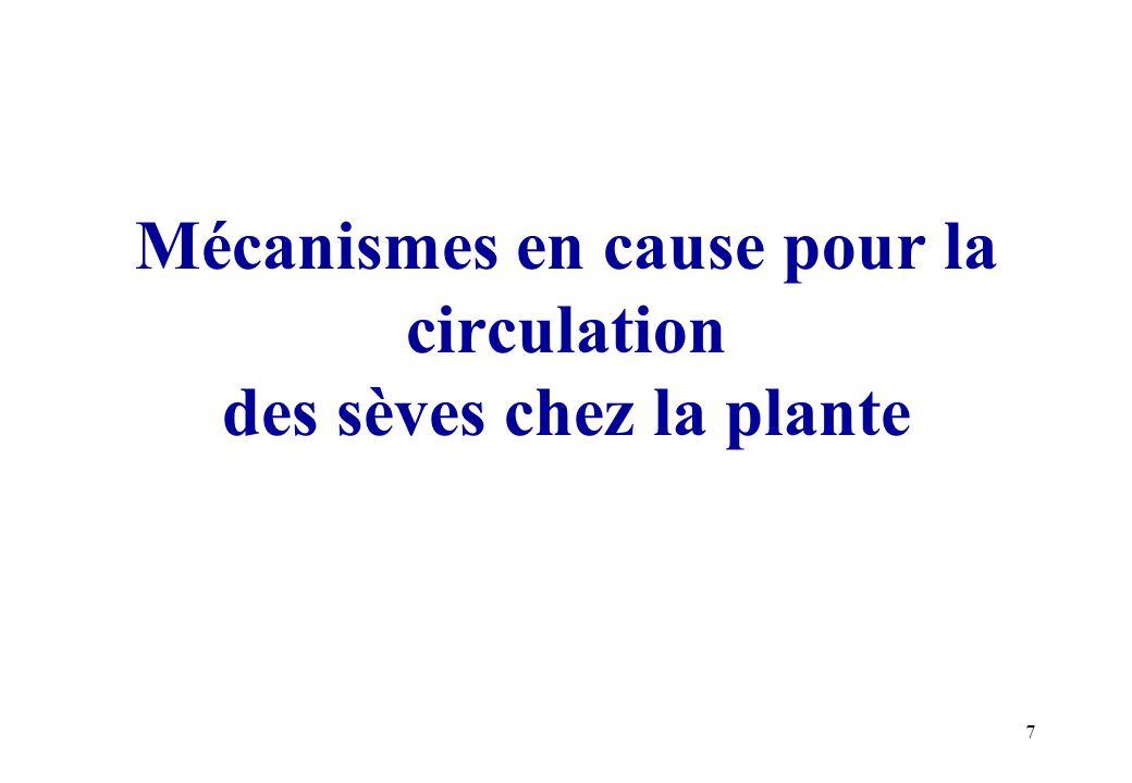 Mécanismes en cause pour la circulation des sèves chez la plante