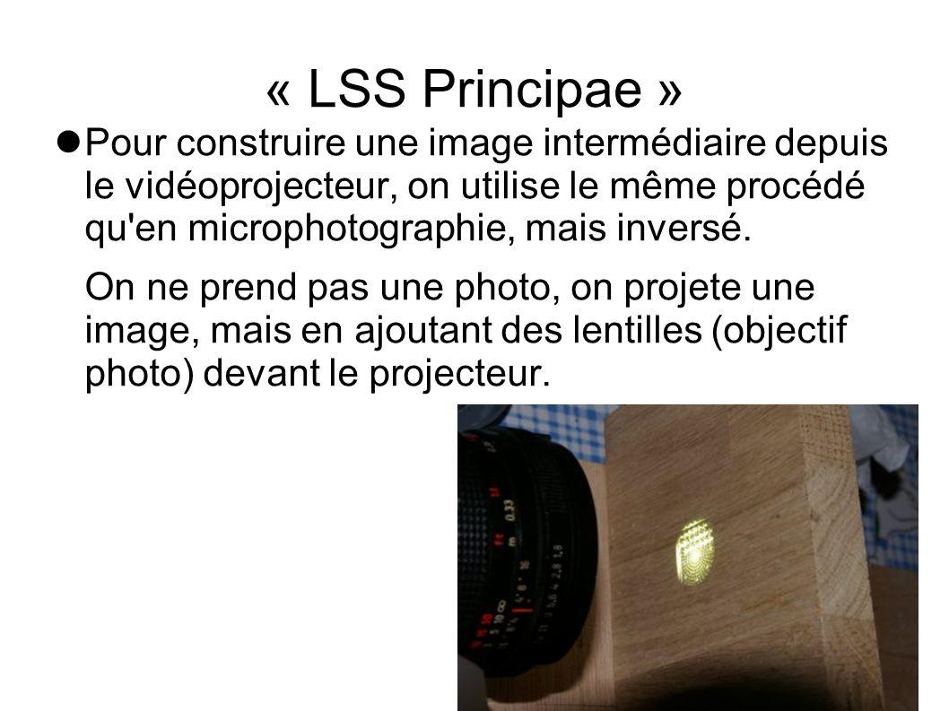 « LSS Principae »