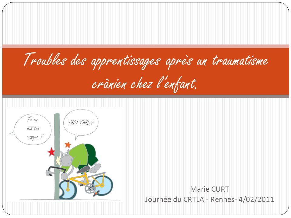 Marie CURT Journée du CRTLA - Rennes- 4/02/2011